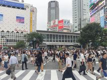 TOKYO, JAPAN - Juli 26, 2017: De voetgangers kruisen bij Shibuya-Cro Stock Afbeelding