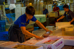 TOKYO, JAPAN JUNE 28 - 2017: Unidentified man wearing blue clothes and delantal, manipulating ice with a metallic pot at. The Fish Market Tsukiji wholesale in Royalty Free Stock Photo