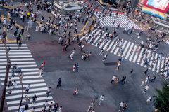 TOKYO JAPAN JUNI 28 - 2017: Bästa sikt av folkmassan av folk som in korsar i Shibuya gata, en av de mest upptagna övergångsställe Arkivfoto