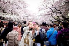 TOKYO, JAPAN - MAART 30: Paar die selfie onder Japanse kersenbloesem bij Ueno-Park nemen Het Uenopark is de beroemdste plaats van Stock Afbeeldingen