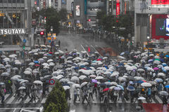 TOKYO, JAPAN - 30. MAI: Nicht identifizierte Fußgänger an Shibuya-Kreuz Lizenzfreies Stockfoto
