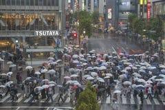 TOKYO, JAPAN - 30. MAI: Nicht identifizierte Fußgänger an Shibuya-Kreuz Stockfotografie