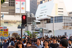 Tokyo, Japan - 25. Mai 2014 Viele Leute kreuzen die Straße und die Ampel Lizenzfreies Stockbild