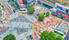 TOKYO, JAPAN - MAY 23, 2016: Aerial view of pedestrians walk at Royalty Free Stock Photography