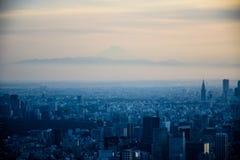 TOKYO JAPAN -, MAY 2016: Flyg- sikt av den Tokyo staden som tas från överkant av det Tokyo Skytree tornet Royaltyfria Bilder