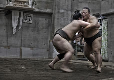 TOKYO, JAPAN - May 18, 2016: Japanese sumo wrestler training in their stall in Tokyo on May 18. 2016 Stock Images