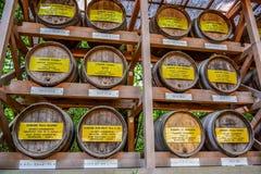 TOKYO, JAPAN: Wooden Barrels stacked of wine at Meiji Shrine in Shibuya, Tokyo Stock Image