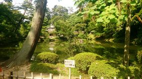 Tokyo japan nature scenery Royalty Free Stock Images