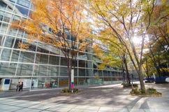 Tokyo, Japan - 26. November 2013: Äußeres des Tokyo-International-Forums Lizenzfreies Stockbild