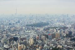 Aerial view for Tokyo metropolis Royalty Free Stock Photos