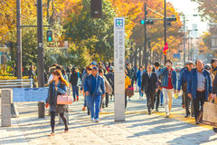 TOKYO, JAPAN - NOVEMBER 20, 2016 Autumn season, Traffic and people who come to Meijijingu/Yoyogi Park in Harajuku District, a majo royalty free stock photography