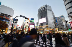 Tokyo, Japan - November 28, 2013: Crowds of people crossing the center of Shibuya Stock Photos