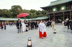 TOKYO JAPAN-NOVEMBER 20: En japansk bröllopceremoni på Meiji Jingu Shrine Arkivbild