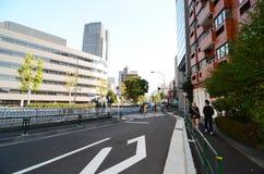 Tokyo Japan - November 23, 2013: Folk som går runt om det Roppongi området Arkivfoto
