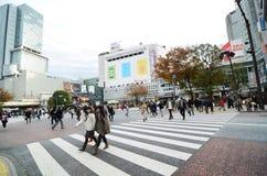 Tokyo Japan - November 28, 2013: Folkmassor av folk som korsar mitten av Shibuya Arkivfoton