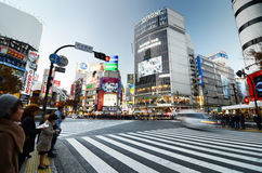 Tokyo Japan - November 28, 2013: Folkmassor av folk som korsar mitten av Shibuya Arkivbild