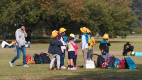 TOKYO, JAPAN - NOVEMBER 7, 2017: A group of japanese children in a city park. Copy space for text. TOKYO, JAPAN - NOVEMBER 7, 2017: A group of japanese children royalty free stock image