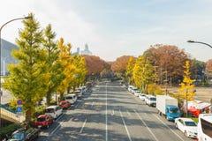 TOKYO, JAPAN - 20. November 2016 Herbstsaison, Ginkgo biloba Ginkgo, Gingko, maidenhair Baum und Auto auf Straße nahe Turnhalle a Stockbilder