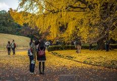 TOKYO, JAPAN - November, 30, 2014: Japanese tourists taking pict Royalty Free Stock Photos
