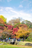 TOKYO, JAPAN - NOVEMBER 20, 2016. Koishikawa Korakuen graden, japanese people and tourists have a nice trip in the autumn colors stock photography