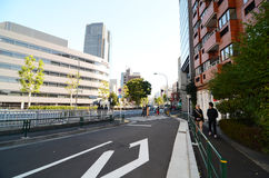Tokyo, Japan - November 23, 2013: Mensen die rond Roppongi-District lopen Stock Foto