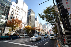 Tokyo, Japan - November 26, 2013: People shopping at Ginza area Stock Photography