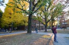 Tokyo, Japan - November 22, 2013: Students at University of Tokyo Stock Photography