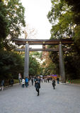 TOKYO, JAPAN - NOVEMBER 23, 2013 : Tourist visit The Torii Gate standing at the entrance to Meiji Jingu Shrine. Royalty Free Stock Images