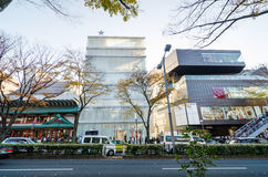 Tokyo, Japan - November 24, 2013: Tourists shopping on Omotesando street Stock Photo