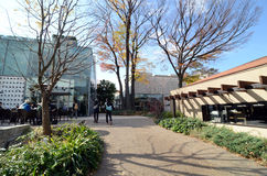 Tokyo Japan - November 28, 2013: Yttersida för folkbesökbyggnad på det Daikanyama området Arkivfoto