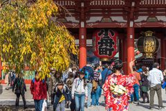 TOKYO, JAPAN - OCTOBER 31, 2017: A crowd of tourists near the temple Senso-ji. TOKYO, JAPAN - OCTOBER 31, 2017: A crowd of tourists near the temple Senso-ji Royalty Free Stock Image