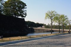 Tokyo Japan Park with trees lined along water Stock Image