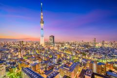 Tokyo Japan Skyline and Tower. Tokyo, Japan cityscape and tower at dusk in Sumida Ward royalty free stock image