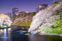 Tokyo Japan Spring Night Stock Image