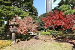Tokyo Japanese garden. Autumn in Tokyo - Japanese garden. Kyu Shiba Rikyu Garden stock photography