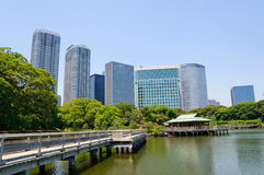 Tokyo, Japon photo stock