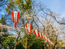 Tokyo, Japon - 24 août 2017 : Fermez d'un Institut central des statistiques de lettre de japanesse un lanter, en accrochant penda Photographie stock