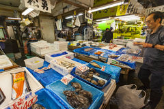 TOKYO - 11. MAI: Käuferbesuch Tsukiji-Fischmarkt Lizenzfreies Stockbild