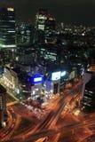 Tokyo at night. View of Tokyo at night Royalty Free Stock Photos