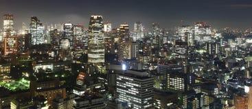 Tokyo at night panorama Royalty Free Stock Photos