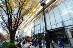 TOKYO - 24 NOV.: Mensen die bij Omotesando-Heuvels, Tokyo, Japa winkelen Stock Afbeelding