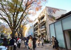TOKYO - 24 NOV.: Mensen die in Omotesando-Heuvels, Tokyo, Japa winkelen Stock Afbeeldingen