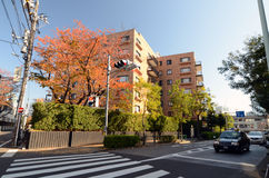 TOKYO - NOV 24: Residential Building on Omotesando Street on Nov Stock Photos