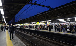 TOKYO -NOV 23 : rush hour at the Shinjuku train station Royalty Free Stock Photo