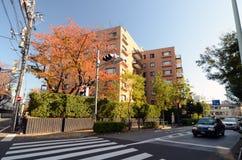TOKYO - 24 NOV.: Woningbouw op Omotesando-Straat op Nov. Stock Foto's