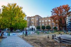Tokyo - November 22: The University of Tokyo, abbreviated as Tod Stock Photography