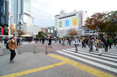 TOKYO - NOVEMBER 28: Crowds of people crossing the center of Shi Royalty Free Stock Photo