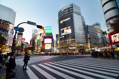 TOKYO - NOVEMBER 28: Crowds of people crossing the center of Shi Royalty Free Stock Image
