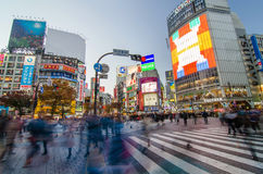 TOKYO - NOVEMBER 28: Pedestrians at the famed crossing of Shibuy Royalty Free Stock Images