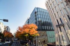 TOKYO - 24. NOVEMBER: Vielzahl-Einzelhandelsgeschäfte auf Omotesando-Straße Stockbilder